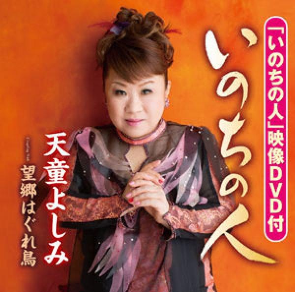 画像1: いのちの人/望郷はぐれ鳥(DVD付)/天童よしみ [CD+DVD] (1)